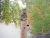 Katt på Borgön